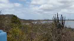 Scenic View of Northern Bonaire Island - Goto Lake Reserve