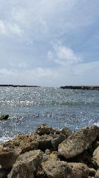 Scenic View of Eastern Bonaire Island - Lagoen Beach