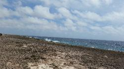 Scenic View of Eastern Bonaire Island - Coast of Washikemba