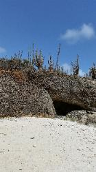 Scenic Views of Washington Slagbaai National Park in Northwest Bonaire - A cave in Reina Maxima Marine Reserve