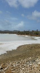 Scenic Views of Washington Slagbaai National Park in Northwest Bonaire - A Salt Lake Reserve