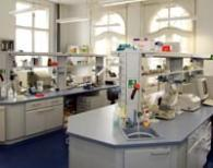 Molecular Cell Biology Lab